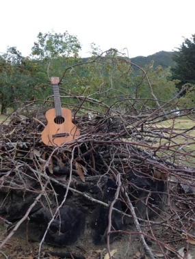 Random Acts of Travelling Sculpture Uke looking dramatic in Athol, South Island NZ Don't fret (ha!) (fret!) I didn't burn it.