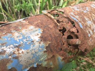 rust nature photo Birrell