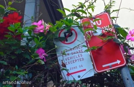 signage Swain organic