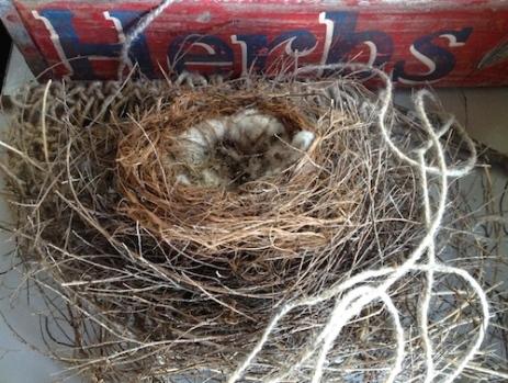 nest knitting art