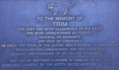 Trim cat