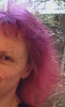 pink hair Sally Swain