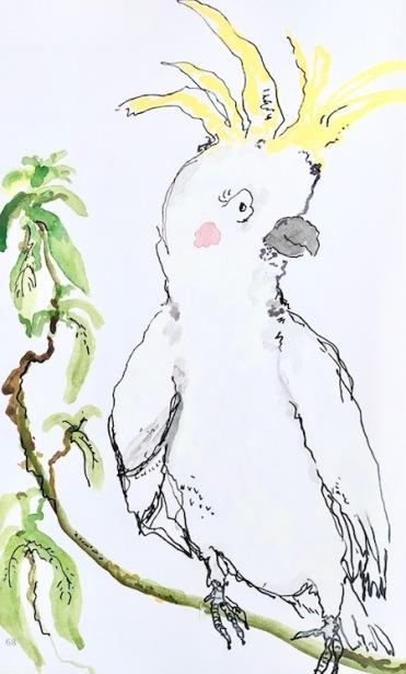 Emily Grant illustrator